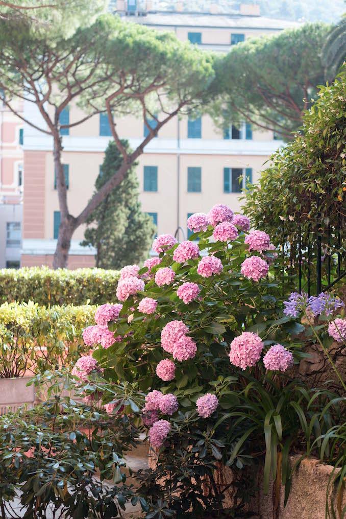 Terrace at Hotel Cenobio dei Dogi | Camogli, Italy