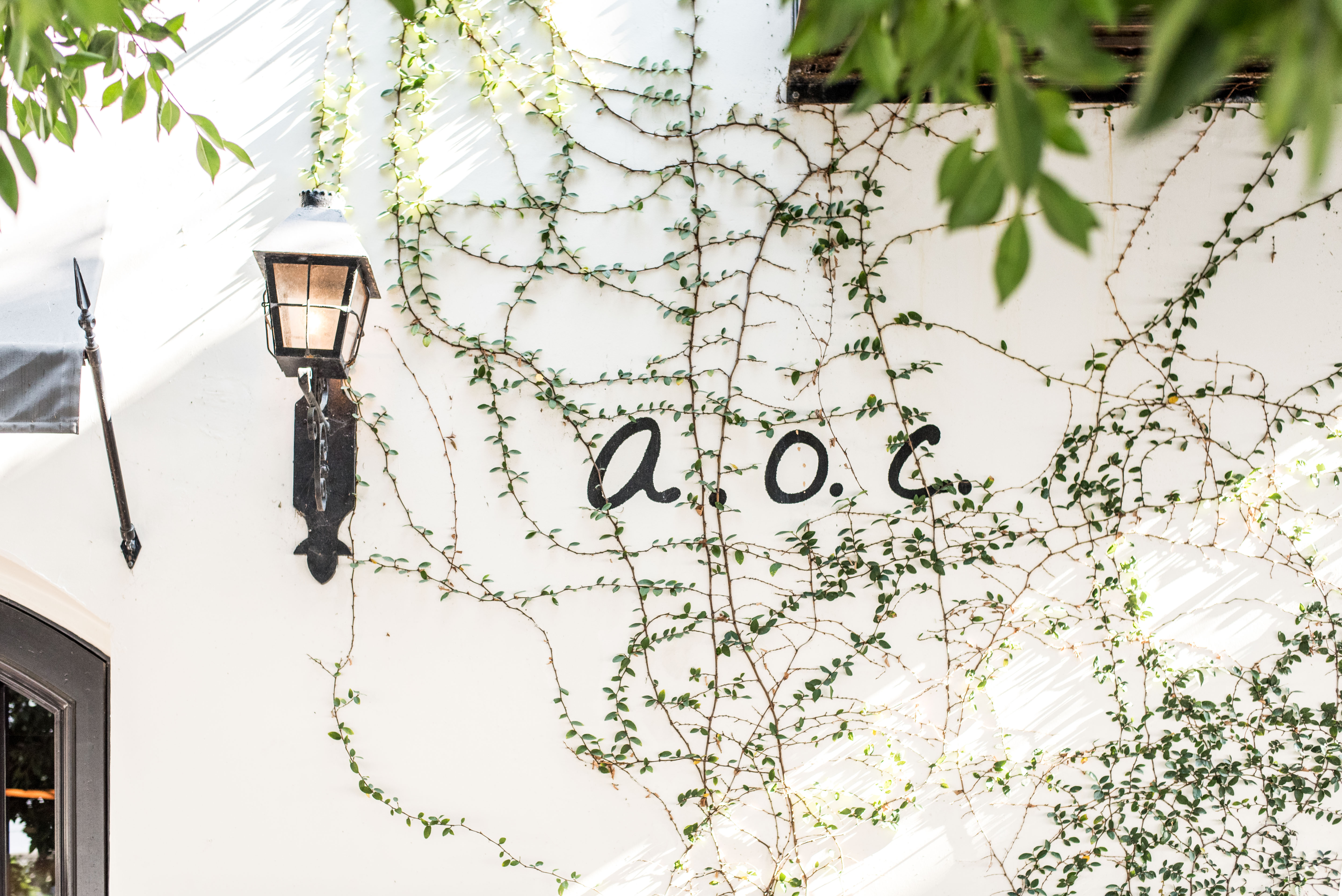AOC Wine Bar & Restaurant LA
