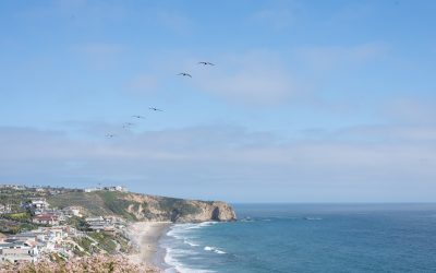 SoCal Luxury at the Ritz-Carlton Laguna Niguel